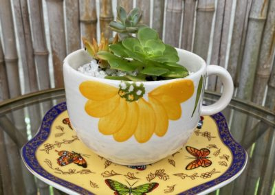 yellow butterfly plate