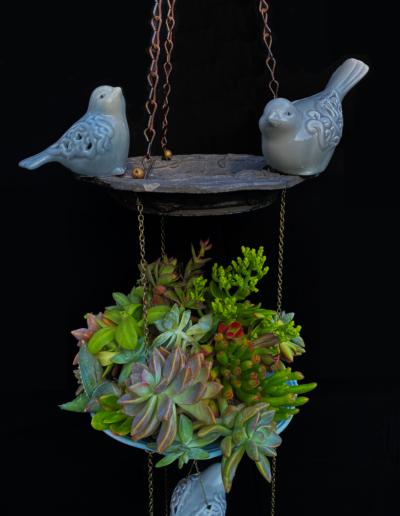 three bird feeder close up